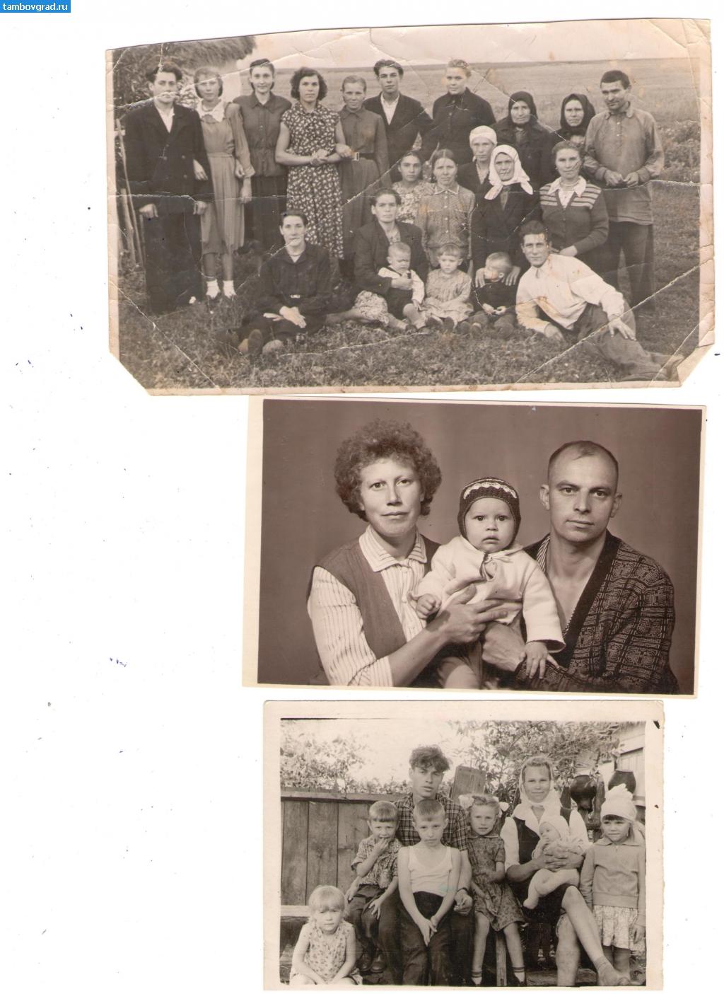 где найти архивные фото родственников этой композиции